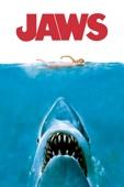 Steven Spielberg - Jaws artwork