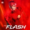 The Flash - Finish Line artwork