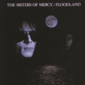 Free Download The Sisters of Mercy Flood II Mp3