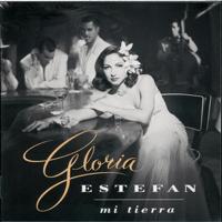 Tus Ojos Gloria Estefan