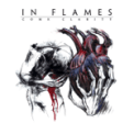 Free Download In Flames Take This Life Mp3