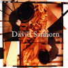 David Sanborn - The Best of David Sanborn  artwork