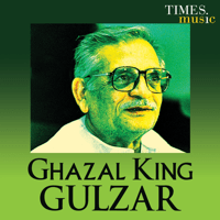 Baarish Gulzar MP3