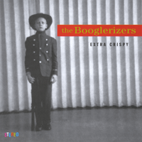 Fool to Love You The Booglerizers MP3