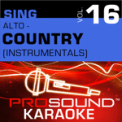 Free Download ProSound Karaoke Band When You Say Nothing At All (Karaoke Instrumental Track) [In the Style of Alison Krauss] Mp3