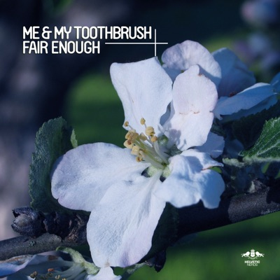 Fair Enough (Sons Of Maria Remix) - Me & My Toothbrush mp3 download
