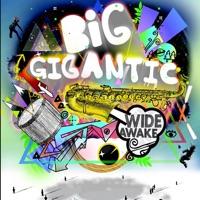 Wide Awake - EP - Big Gigantic mp3 download