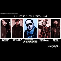What You Sayin' (feat. Styles P, Masspike Miles, Tuge Palermo & French Montana) - Single - J. Cardim mp3 download