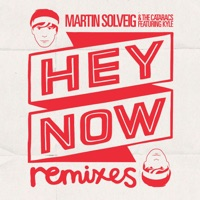 Hey Now (feat. Kyle) - Martin Solveig & The Cataracs mp3 download