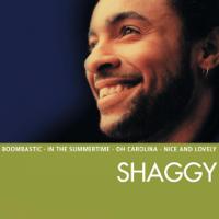 Boombastic (Sting Remix) Shaggy