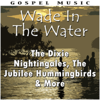 All I Need Is Some Sunshine In My Life The Dixie Nightingales MP3