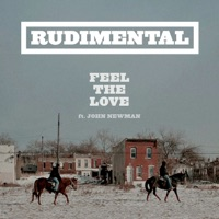 Feel the Love - Single - Rudimental mp3 download