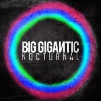 Nocturnal - Big Gigantic mp3 download