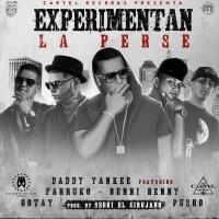 Experimentan la Perse (Remix) [feat. Daddy Yankee, Farruko, Gotay & Pusho] - Single - Benny Benni mp3 download