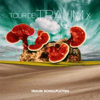 Desert (Microtrauma Remix) Ron Flatter MP3