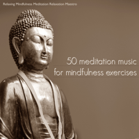 Trance Relaxing Mindfulness Meditation Relaxation Maestro MP3