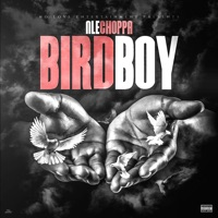 Birdboy - Single - NLE Choppa mp3 download