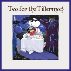 Tea for the Tillerman² - Tea for the Tillerman² mp3 download