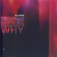Why - Single - Ali Gatie mp3 download