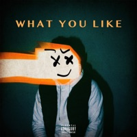 What You Like (feat. Flipp Dinero) - Single - DAYXIV mp3 download