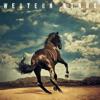 Bruce Springsteen - Western Stars  artwork