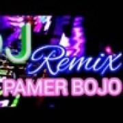 download lagu Nofin Asia Pamer Bojo Remix