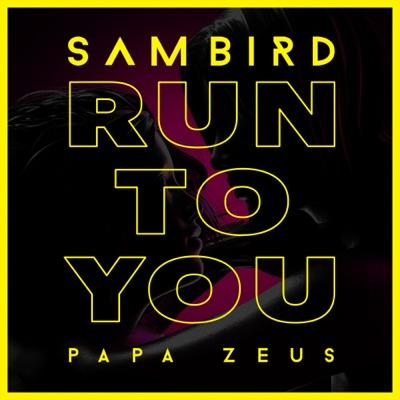 Run To You - Sam Bird & Papa Zeus mp3 download