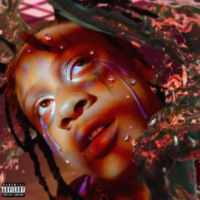 6 Kiss (feat. Juice WRLD & YNW Melly)-A Love Letter to You 4 - Trippie Redd mp3 download