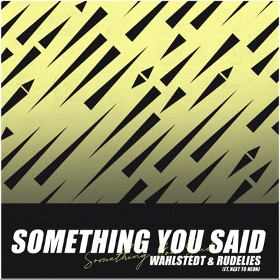 Something You Said - Wahlstedt & RudeLies mp3 download