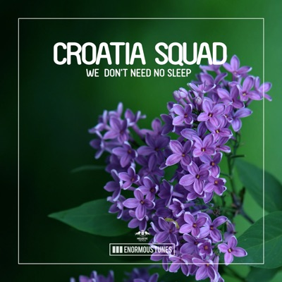 We Don't Need No Sleep - Croatia Squad mp3 download