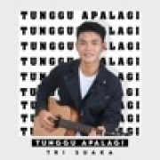 download lagu Tri Suaka Tunggu Apalagi