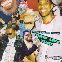 Drip Like That (feat. Gunna) - Single - Reese LAFLARE mp3 download