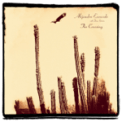 Free Download Alejandro Escovedo Outlaw for You Mp3