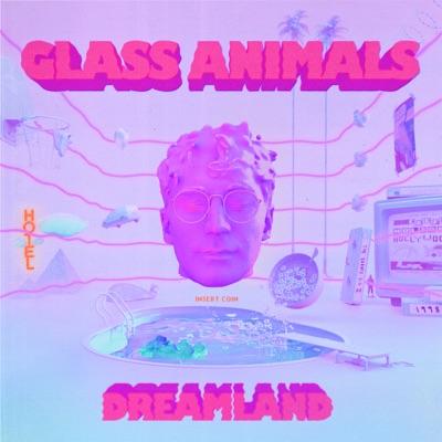 Heat Waves - Glass Animals mp3 download