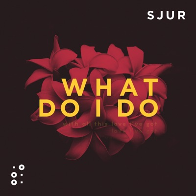 What Do I Do - SJUR mp3 download