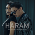 Free Download Hael Husaini & Dayang Nurfaizah Haram Mp3