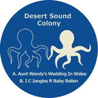 Aunt Wendy's Wedding in Wales (Instrumental) Desert Sound Colony