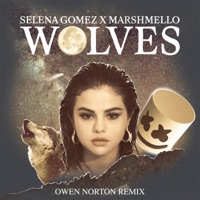 Wolves (Owen Norton Remix) - Single - Selena Gomez & Marshmello mp3 download