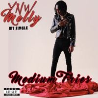 Medium Fries - Single - YNW Melly mp3 download