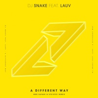A Different Way (feat. Lauv) [Bro Safari & ETC!ETC! Remix] - Single - DJ Snake mp3 download