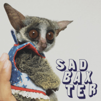 Baby Sad Baxter MP3