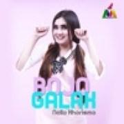 download lagu Nella Kharisma Bojo Galak