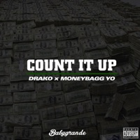 Count It Up - Single - Drako & Moneybagg Yo mp3 download