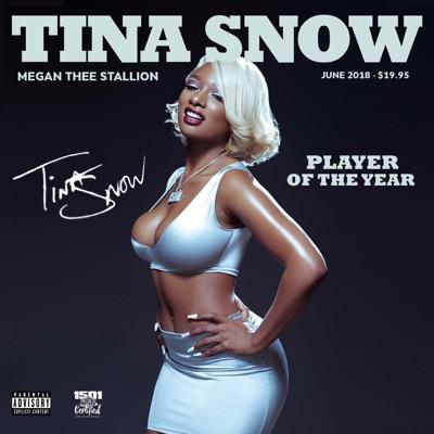 Big Ole Freak-Tina Snow - Megan Thee Stallion mp3 download