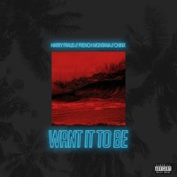 Want It to Be (feat. French Montana & Chinx) - Single - Harry Fraud mp3 download