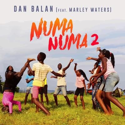 Numa Numa 2 - Dan Balan Feat. Marley Waters mp3 download