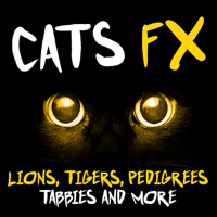 Street Cat Meows 1 The Feline Effectors
