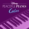 Disney Peaceful Piano - Disney Peaceful Piano: Calm  artwork