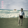 Of Monsters and Men - My Head Is an Animal  artwork