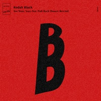 Too Many Years (feat. PnB Rock) [Baauer Rewind] - Single - Kodak Black mp3 download